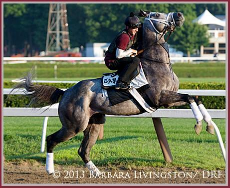 Graydar is Back!